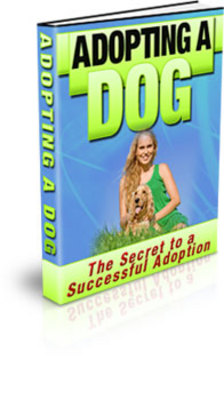 Product picture The New Dog - Adopting A Dog